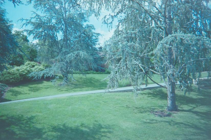 2014-Arboretum, Lake Carolyn, Random|27|©JamesECockroft-20141224