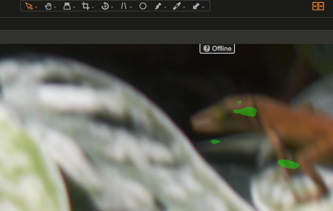 Capture One Pro Focus Mask in use (2)