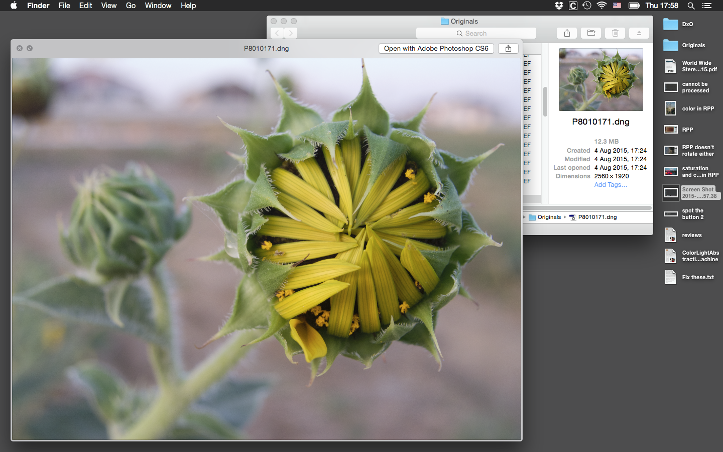 But even the Finder can see it... what's DxO thinking?